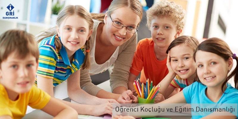 öğrenci koçluğu ve eğitim danışmanlığı gri danışmanlık